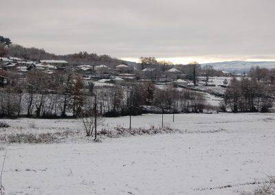 Laioso con neve