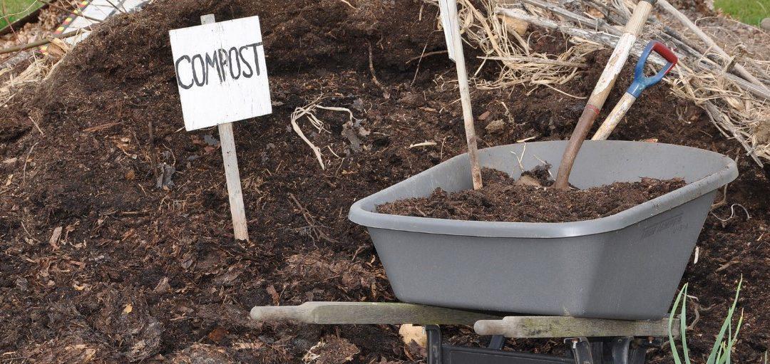 Campaña de compostaxe